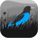 Grayland 1.5.05.01725 Apk + Mod > Android